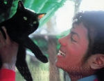 michaeljacksonphotos1984withblackcatse1010a