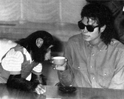 1987. Σε μια συνέντευξη τύπου ο Μάικλ Τζάκσον με τον χιμπατζή του τον Μπαμπλς. Ο χιμπατζής δεν ήταν ένα κατοικίδιο αλλά ένας φίλος, σχεδόν ένα μέλος της οικογένειας. Η ιστορία του  είναι αξιοπρόσεχτη, καθώς ο Μπαμπλς στην ουσία σώθηκε από τον Μάικλ Τζάκσον, όταν τον πήρε από ένα εργαστήριο πειραμάτων.