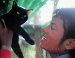 michaeljacksonphotos1984withblackcatse1010a1