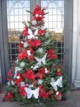 MJ  Christmas tree Holy Terrace