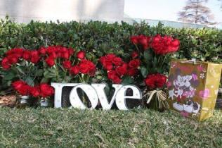 Michael Jackson Valentine Day 2