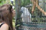 Paris-kissing-the-bird-at-Houmas-House-paris-jackson-30298791-448-299