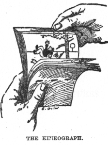 Linnet_kineograph_1886