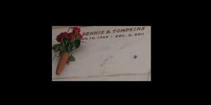 one rose for MJ 2016 Dennis Tompkins 2