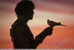 michael-jackson-holding-bird