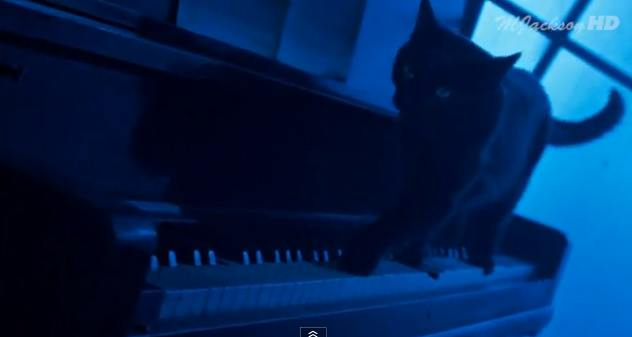 cat-in-michael-jackson-video-clip-smooth-criminal