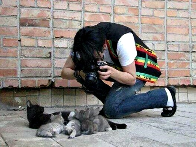 michael-jackson-taking-picture-of-cats-in-brasil