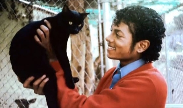 michael-jackson-with-cat-thriller-era
