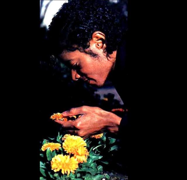 michaelandflowers